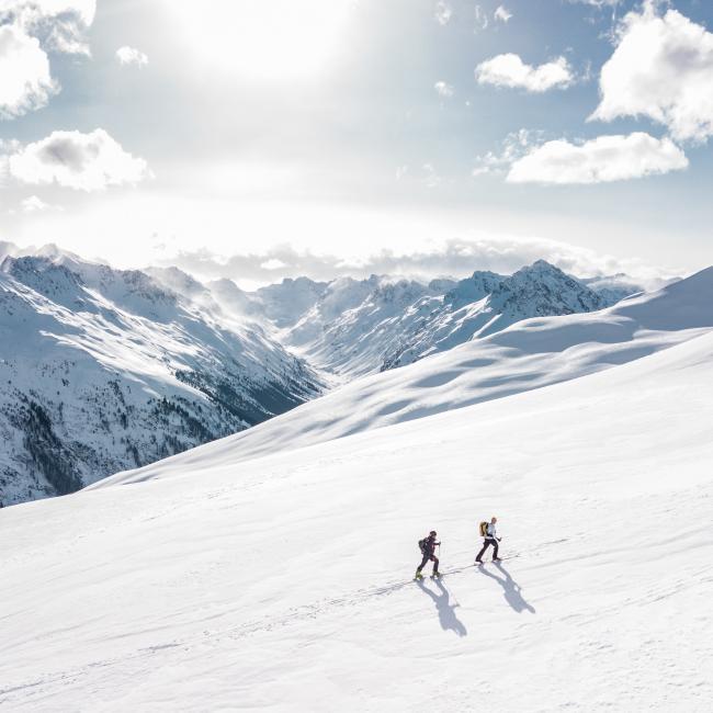 Digitale Konferenz Alpine Sicherheitsgespräche 2020